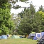Rotorua Accommodation Gallery - Tranquil Camping area under trees