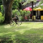 Rotorua Accommodation Gallery - Bike friendly