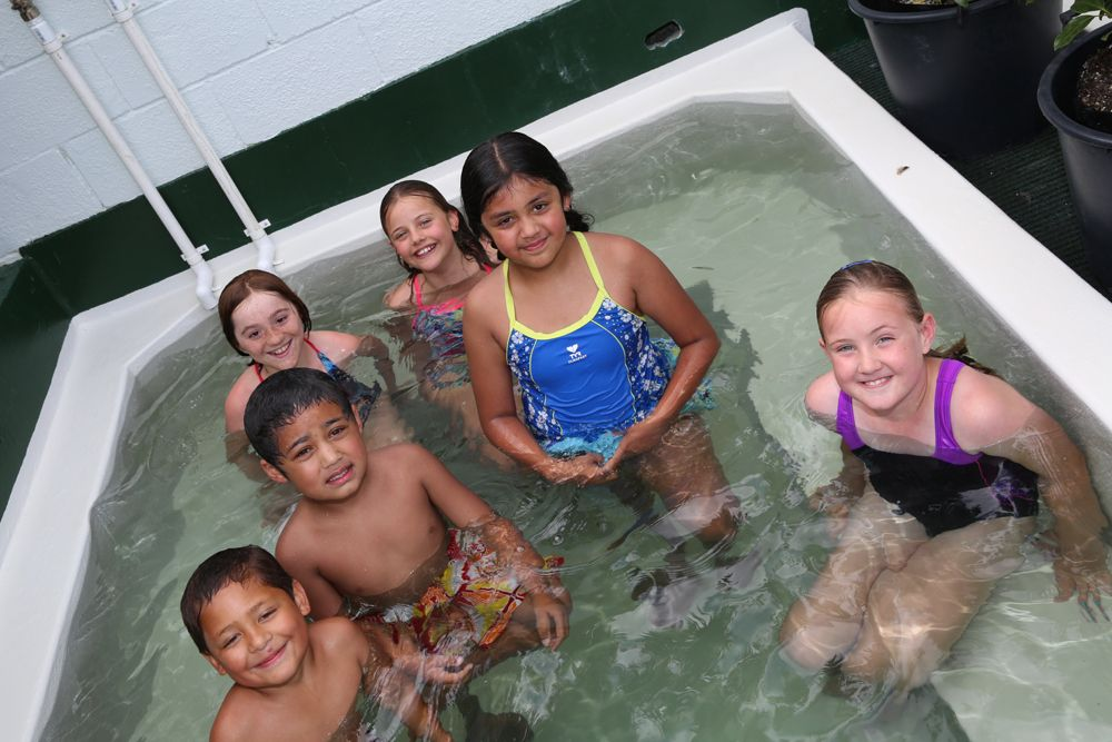 Rotorua Accommodation Hot Pools